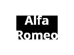 Alfa Romeo remschoenen