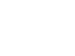 Ford fuseekogels