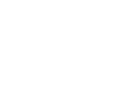 IVeco wiellagers