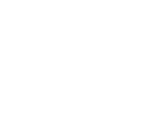 Renault wiellagers