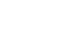 Volkswagen (vw) wiellagers