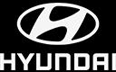 Voor alle modellen van HYUNDAI hebben wij de remonderdelen