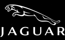 Voor alle modellen van JAGUAR hebben wij de remonderdelen